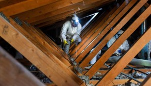 attic clean out service