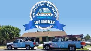 termite company Los Angeles County CA