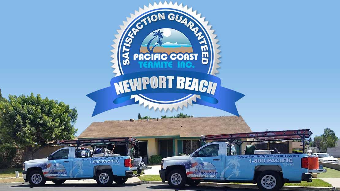termite company Newport Beach CA