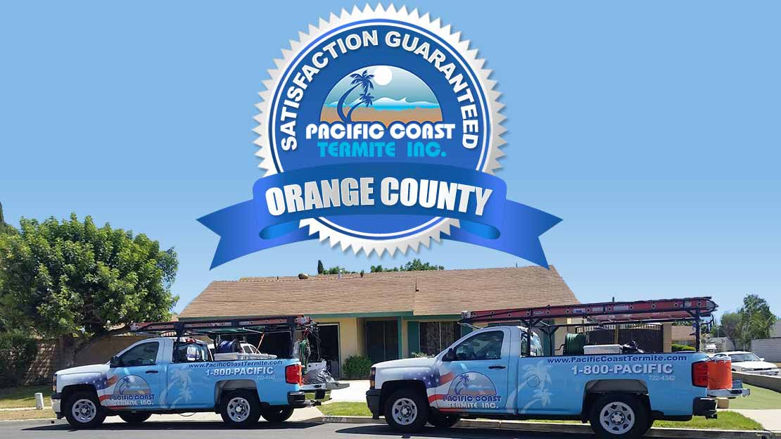 termite company Orange County CA