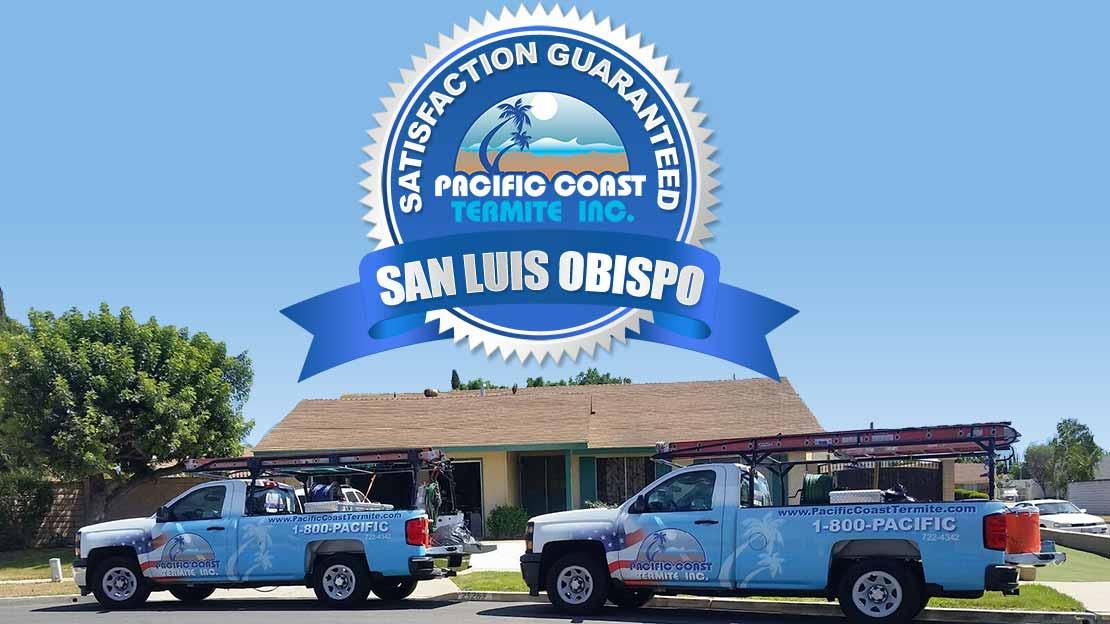 termite company San Luis Obispo County CA