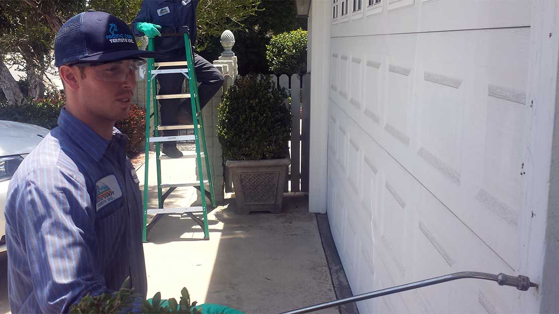 tech applies termite treatment san diego home