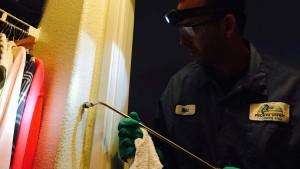 technician applies xt-2000 orange oil termite treatment