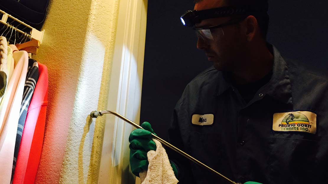 technician applies xt-2000 orange oil termite treatment