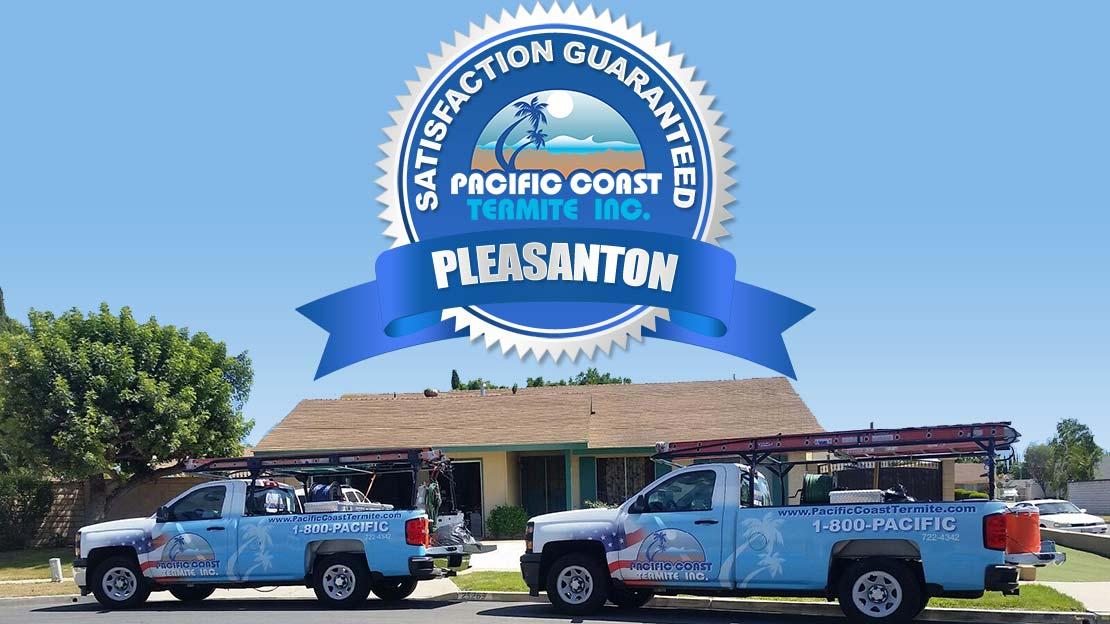 termites company Pleasanton, CA